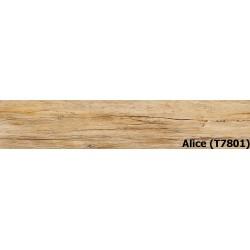 Alice (T7801)